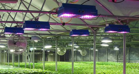 Greenhouse Lighting Fixtures Going Green To Stay In The Black Greenhouse Product News
