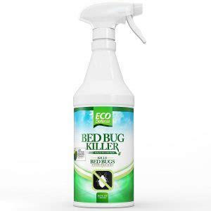 pesticides   effective bedbug control