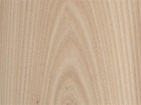 bureau d 騁ude construction m騁allique feuille placage bois brut bilegno orme d am 233 rique ramageux