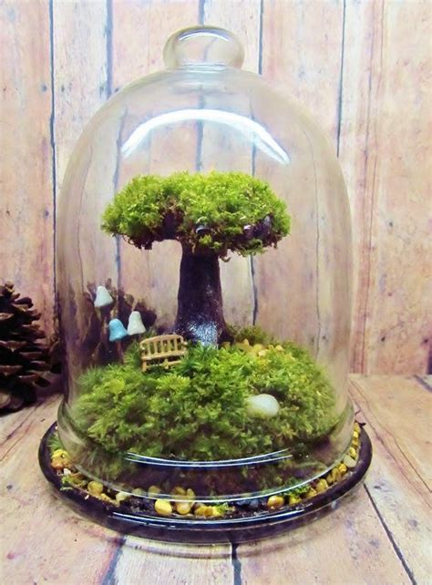 Handmade Terrariums - 25 best ideas about moss terrarium on moss