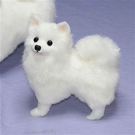 pomeranian stuffed animal ranran rakuten global market general plush spitz pomeranian stuffed animal