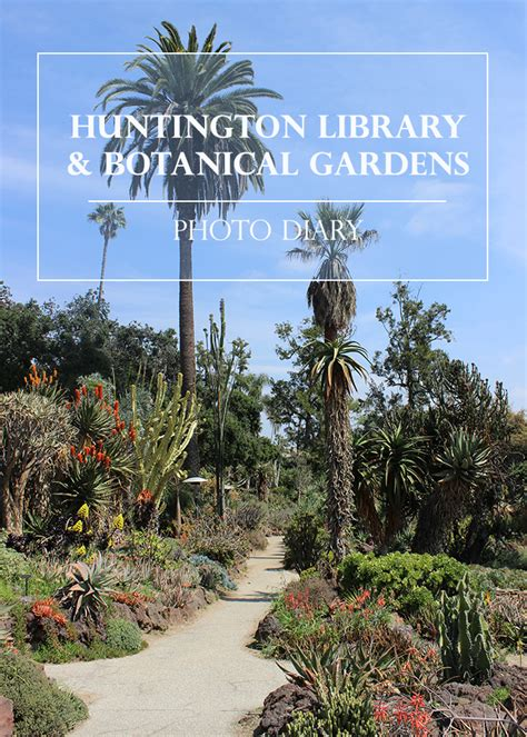 Sweet Helen Grace Huntington Library Botanical Gardens Huntington Botanical Gardens Hours