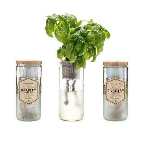 hydroponic nutrients  images indoor herb garden