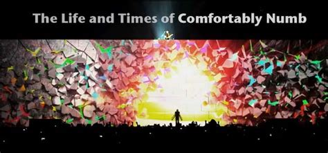 pink floyd the wall comfortably numb the life and times of quot comfortably numb quot