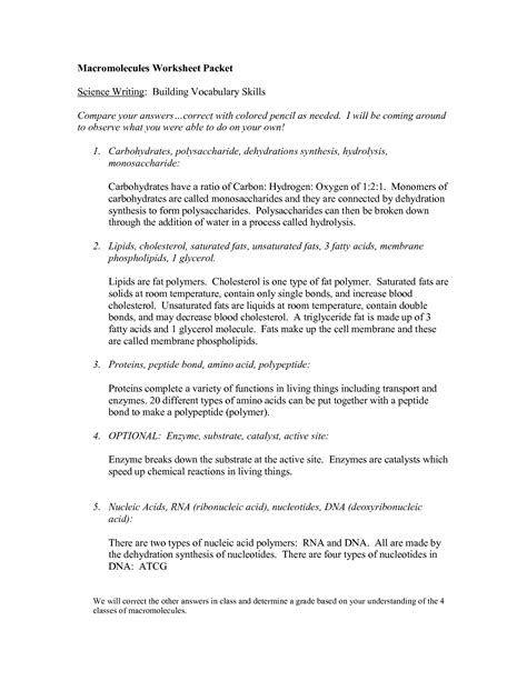 Macromolecules Worksheet by 28 Macromolecules Worksheet Answers 12 Best Images