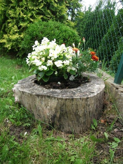 imagenes de jardines con troncos troncos reciclados con plantas y flores