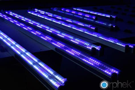 Aquarium Gel Ternak Semut Illuminated about work llc new orleans la