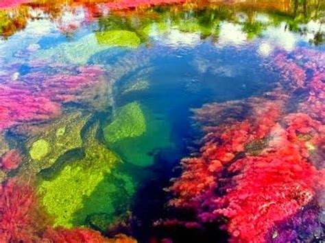 columbia colors ca 241 o cristales river of five colors columbia oh the