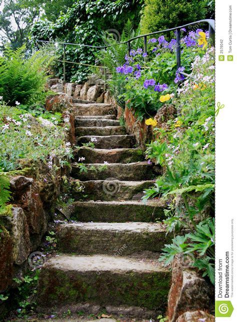 steps stock photo image of cottage garden plants