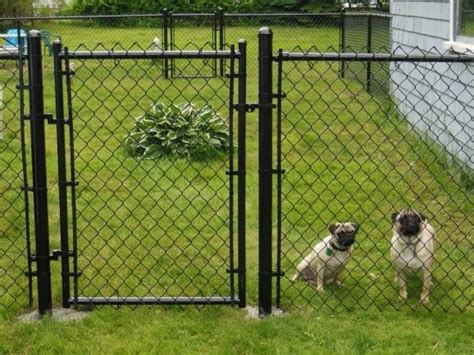 backyard dog fence ideas outdoor fencing for dogs fence ideas