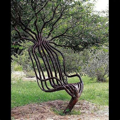 image gallery tree chair