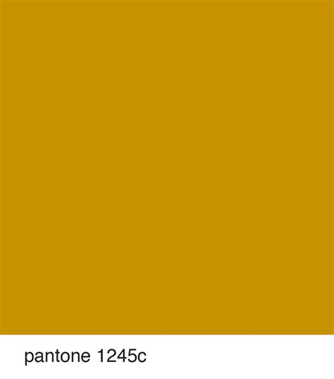 pantone yellow color of the season pantone 1245c mustard yellow fall