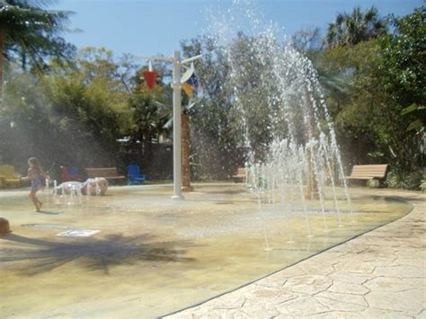 Central Florida Zoo Botanical Gardens Sanford Fl Splash Pad Billede Af Central Florida Zoo Botanical Gardens Sanford Tripadvisor