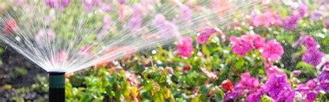 vivai piante da giardino ingrosso piante da giardino bergamo
