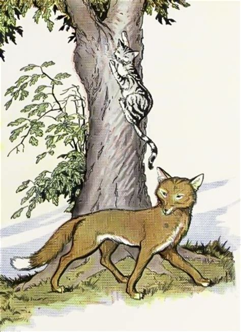 is a fox a cat or the fox and the cat fables of aesop