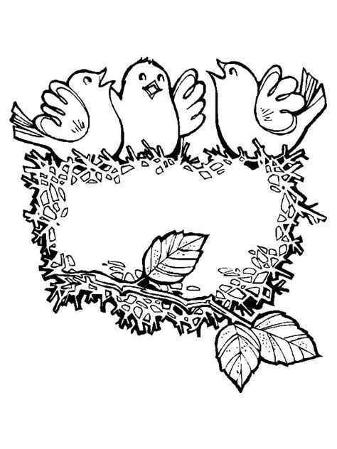 coloring pages of birds singing baby bird singing in their bird nest coloring pages best