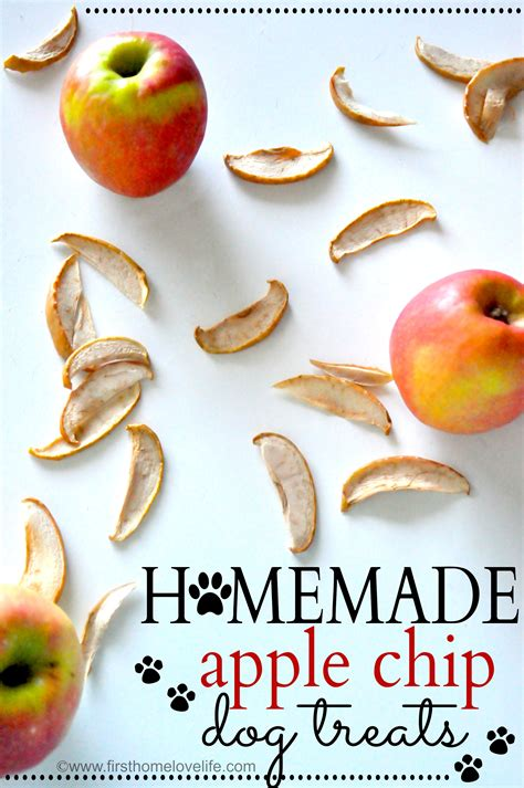 dogs apples apple treats