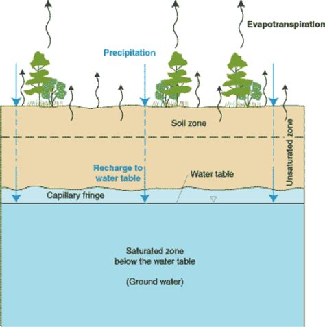 where is the water table located aquifer anatomy earth 111 water science and society