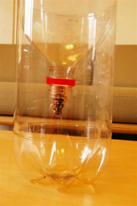 How To Make A L From A Bottle by 20 And Creative Crafts With Plastic Soda Bottles Page 2 Of 2 Diy Crafts