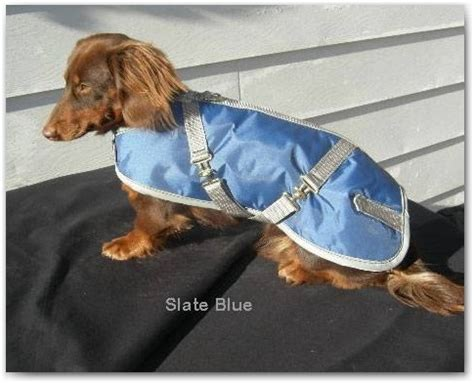 foggy mountain coats 17 best images about raincoats for dogs on coats let me in and design