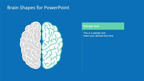 templates for powerpoint brain brain shapes for powerpoint
