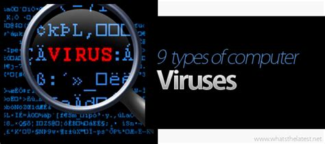 the different types of computer viruses 1 877 778 8342 new york
