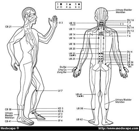 atlas of acupuncture points chiro wellspring chiropractic center minneapolis mn 55432