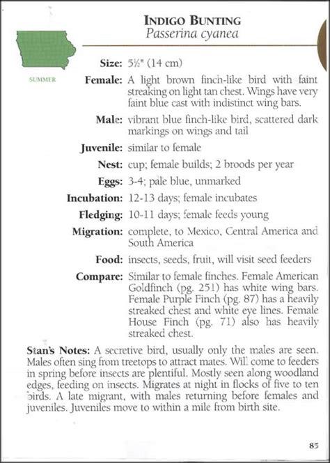 birds of iowa field guide 021397 details rainbow