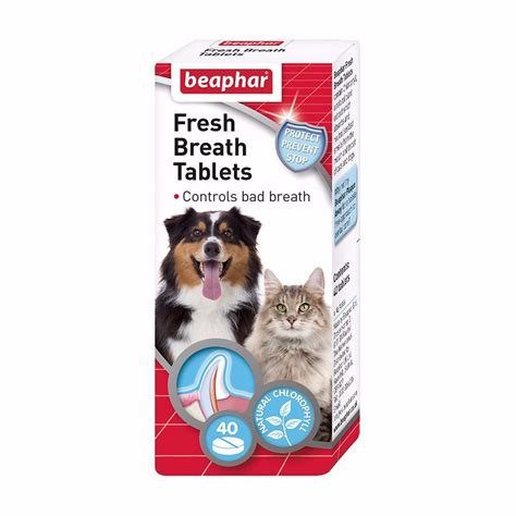 breath freshener breath freshener tablets for dogs and cats x 40 pets at home