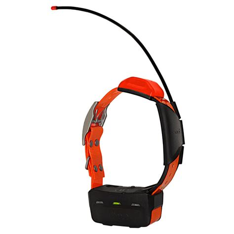 orange collar garmin t5 additional gps tracking collar 249 99 free shipping us48