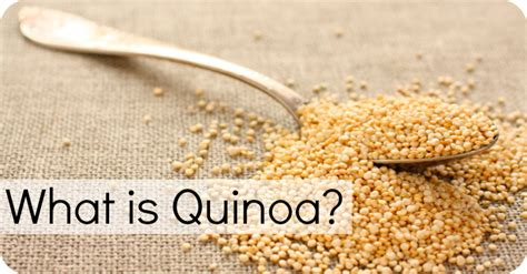 what is what is quinoa