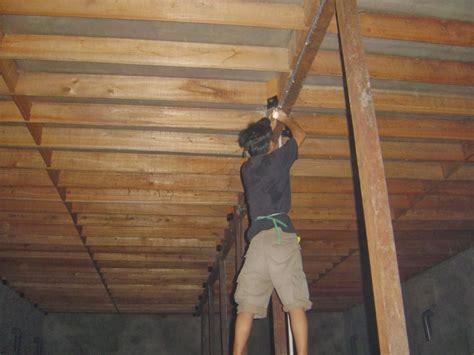 membuat rumah burung walet perlengkapan pendukung rumah burung walet dsw