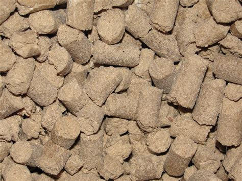 Cattle Feed File A View Of Cattle Feed Jpg