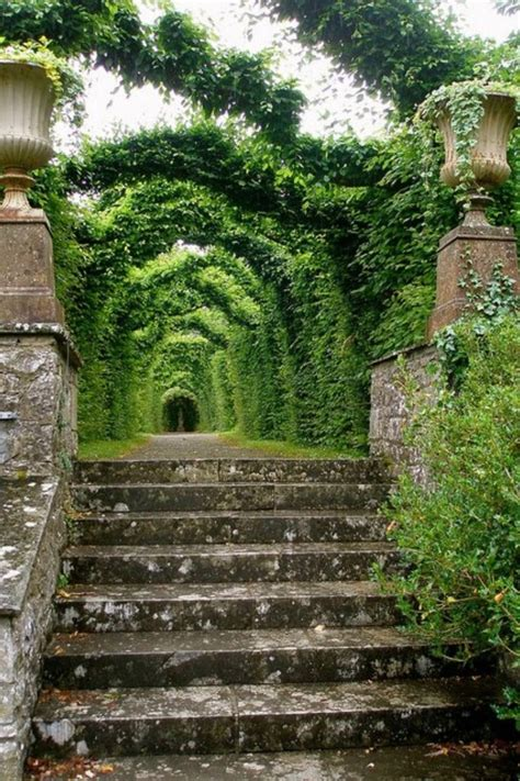 celtic garden 17 best images about gardens on gardens