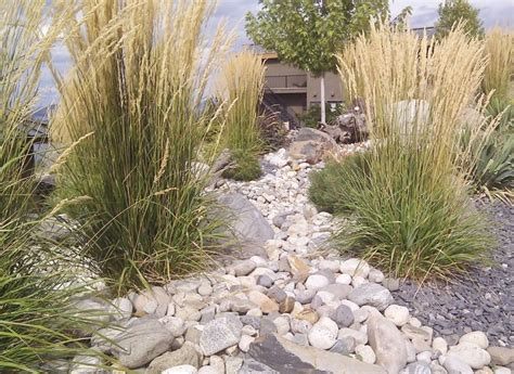 Landscaping Ideas Xeriscape Landscaping Xeriscape Landscaping Ideas Colorado