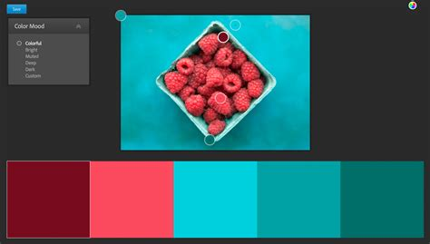 adobe colors adobe color themes how to create use them for color