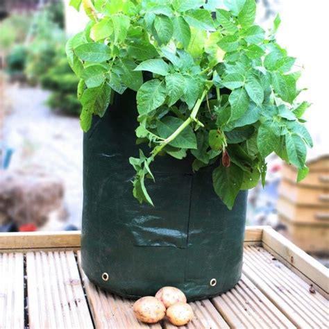 greena potato planter garden