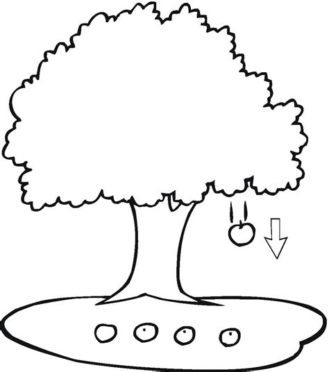 coloring book pages of trees free printable apple coloring pages for kids