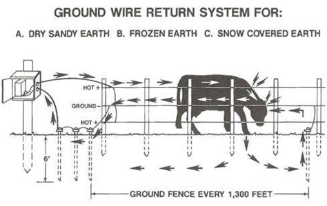 high voltage cattle company electric fence electric fence cattle voltage