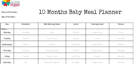 vegetables 10 month baby 10 months baby diet cqnews