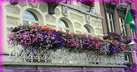 balconi fioriti in inverno balconi fioriti le piante di primavera le nuove mamme