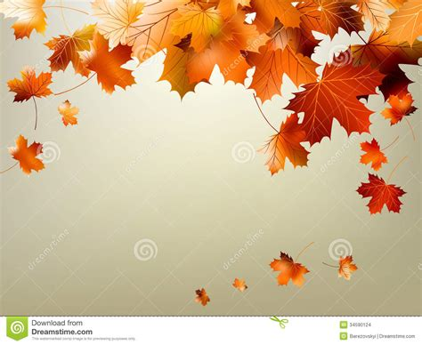falling on tamarind trees a travelogue of books colorful autumn leaves falling eps 10 stock images