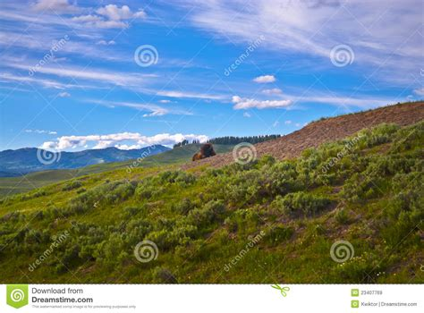 yellowstone landscape yellowstone landscape royalty free stock images image 23407769