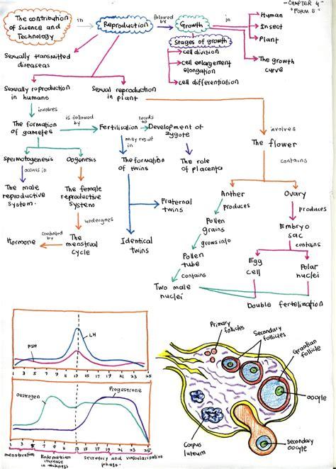 bijak tekun nota kreatif bijak tekun nota kreatif biologi tingkatan 5 bab 4