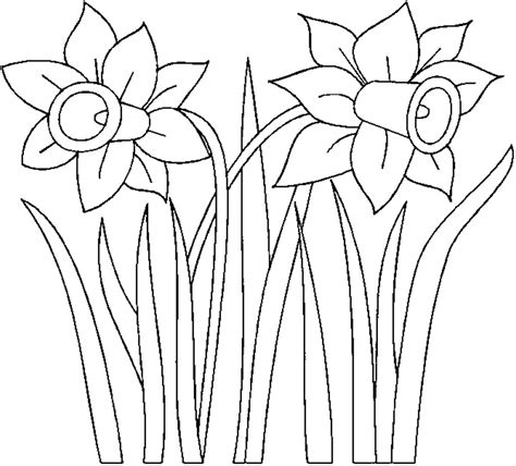 free coloring pages of outline of a daffodil