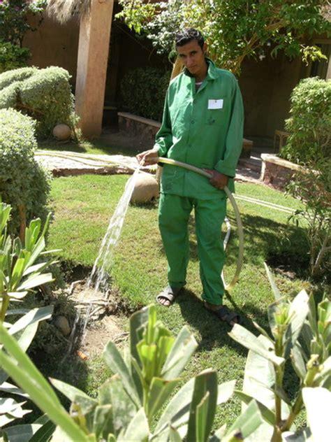 hotel gardener watering grows