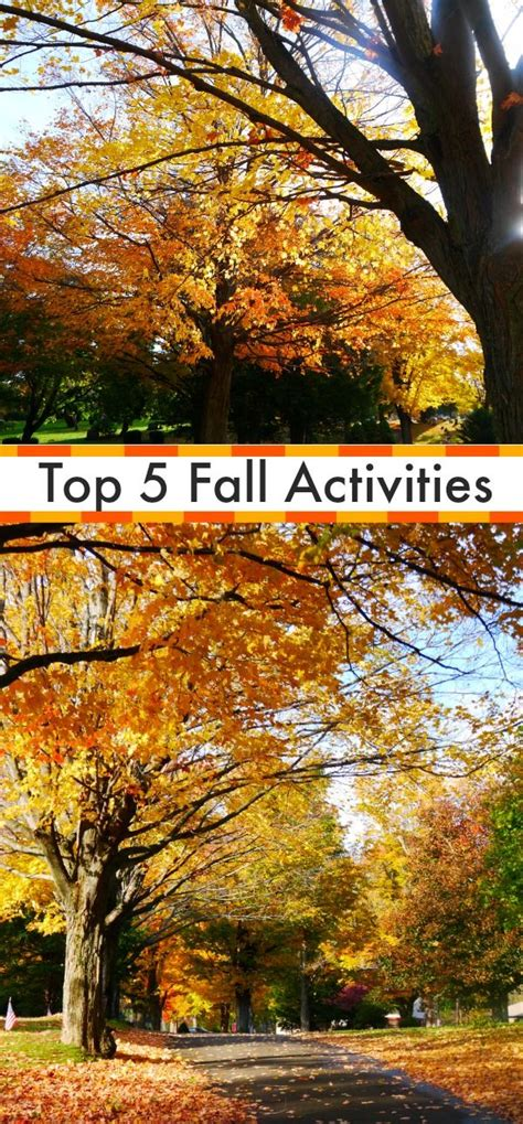 5696 best fun activities for kids images on pinterest fall fall preschool and craft activities
