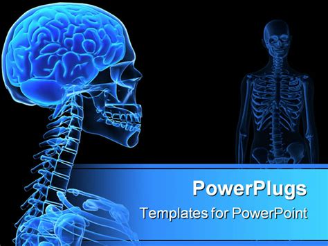 x powerpoint templates 3d rendered x illustration of a human with brain