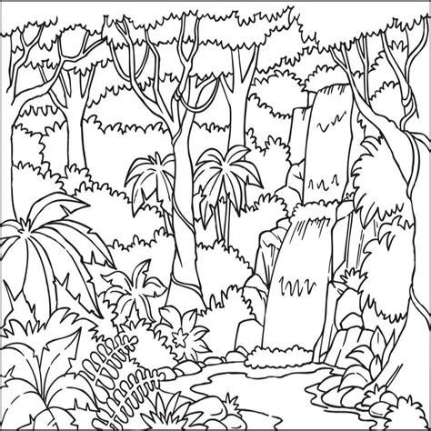 coloring pages tropical rainforest tropical rainforest coloring pages eliolera com and