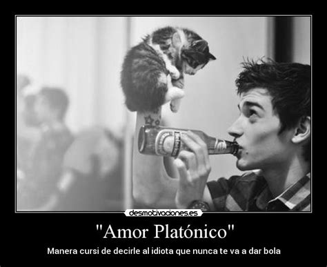 1000 images about amor platonico on pinterest pin amor platonico los tucanes de tijuana en vivo acceso